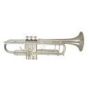 Tromba in Sib WISEMANN mod. DTR-800SP