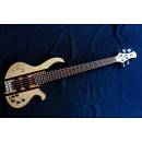 Victor Bass Semiacustico 5 corde