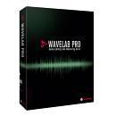 Steinberg WaveLab Pro 9 - Educational - Spedizione Gratuita - Pronta Consegna