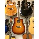 Breedlove Discovery Dreadnought CE SB
