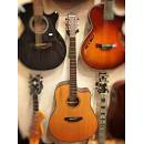 Breedlove Discovery Dreadnought CE Natural