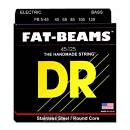 DR STAINLESS STEEL / ROUND CORE STRINGS FB5-45 - 5 CORDE PER BASSO FAT BEAMS