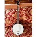 Banjo ARIA SB-100 5 corde