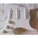 Battipenna Stratocaster  completo