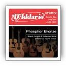 D'ADDARIO EPBB170 Phosphor Bronze Acoustic Bass Long Scale