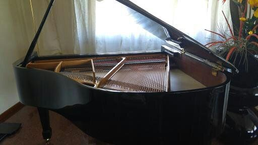 Carl Steinberg, pianoforte a coda