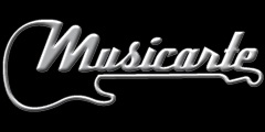 MUSICARTE STORE Strumenti Musicali