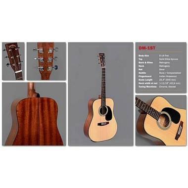 Sigma Guitars serie 1 modello DM-1ST Mogano, Abete, Palissandro. Set Up Liuteria