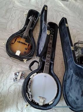 Ashton mandolino