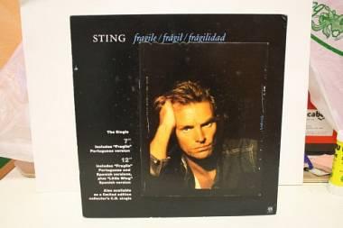 """Sting """"fragile""""display per negozi di dischi  molto raro"""
