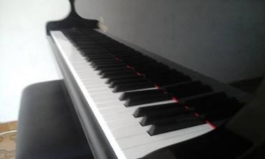 SUPER AFFARE/Prezzo trattabile/Pianoforte Libermann 1/2coda perfette condizioni!