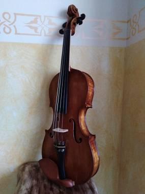 Violino liuteria