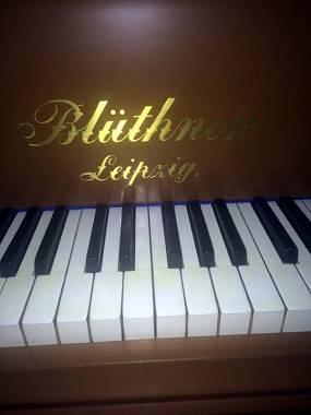PIANOFORTE A CODA BLUTHNER