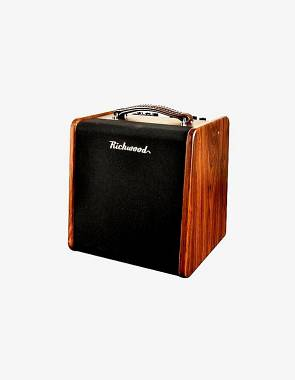 Richwood RAC 50 amplificatore per chitarra acustica 50W