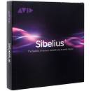 SIBELIUS ANNUAL UPGRADE AND SUPPORT PLAN Reinstatment