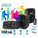 Laney AH210 Impianto Audio Completo, Mixer,Casse,Microfono,Cavi. USB ed Effetti
