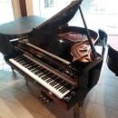 Pianoforte a coda Schimmel 174