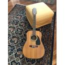 Fender 12 corde vintage amplificata