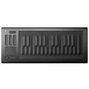 TASTIERA CONTROLLER MIDI ROLI SEABOARD RISE 25