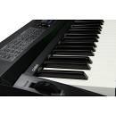 Casio Casio Privia px 3 Limited Edition Digital Piano+Custodia [ULTIMO RIBASSO]
