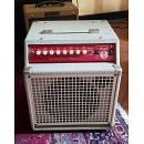 SWR (Fender) Strawberry Blonde - Amplificatore per Strumenti Acustici