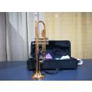 Arrow Tromba in Sib - USATA - SPEDIZIONE GRATUITA