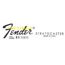 Decal Fender STRATOCASTER ANNI 80""