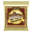 Ernie Ball erthwood medium 13-56 6pz