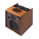 Acus One Forstring 6T Amplificatore per Chitarra Acustica