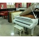 YAMAHA C3 BIANCO PIANOFORTE A CODA + PANCHETTA