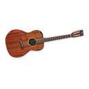 Takamine EF 407 chitarra acustica elettrificata in koa