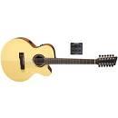 VGS Guitars Serie Bayou B40-12CE chitarra acustica 12 Corde Elettrificata.